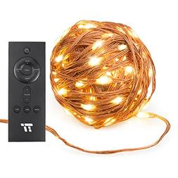 TaoTronics 33 ft 100 LED String Lights with RF Remote Contro