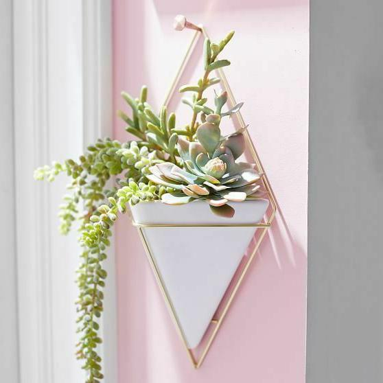 UMBRA Wall Planted / Brass