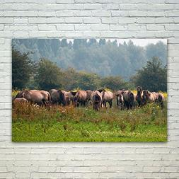 Westlake Art Nature Wildlife - 12x18 Poster Print Wall Art -
